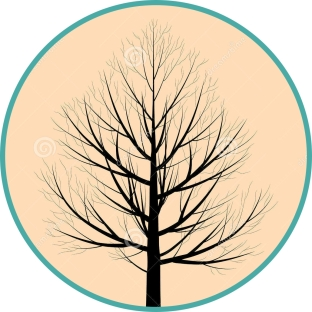 silueta-del-árbol-35334937